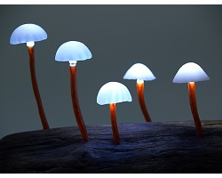 Návody - LED žiarovky, LED pásy, napájacie zdroje, LED reflektory